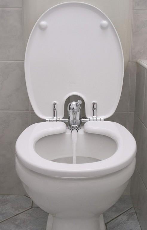 toilette nett rg p. Black Bedroom Furniture Sets. Home Design Ideas